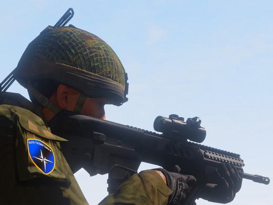 Gruppenführer Alpha: Eagle [Operation Watchdogs]
