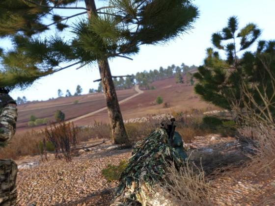Sniper Valley