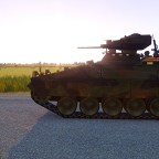 Marder in the Sun