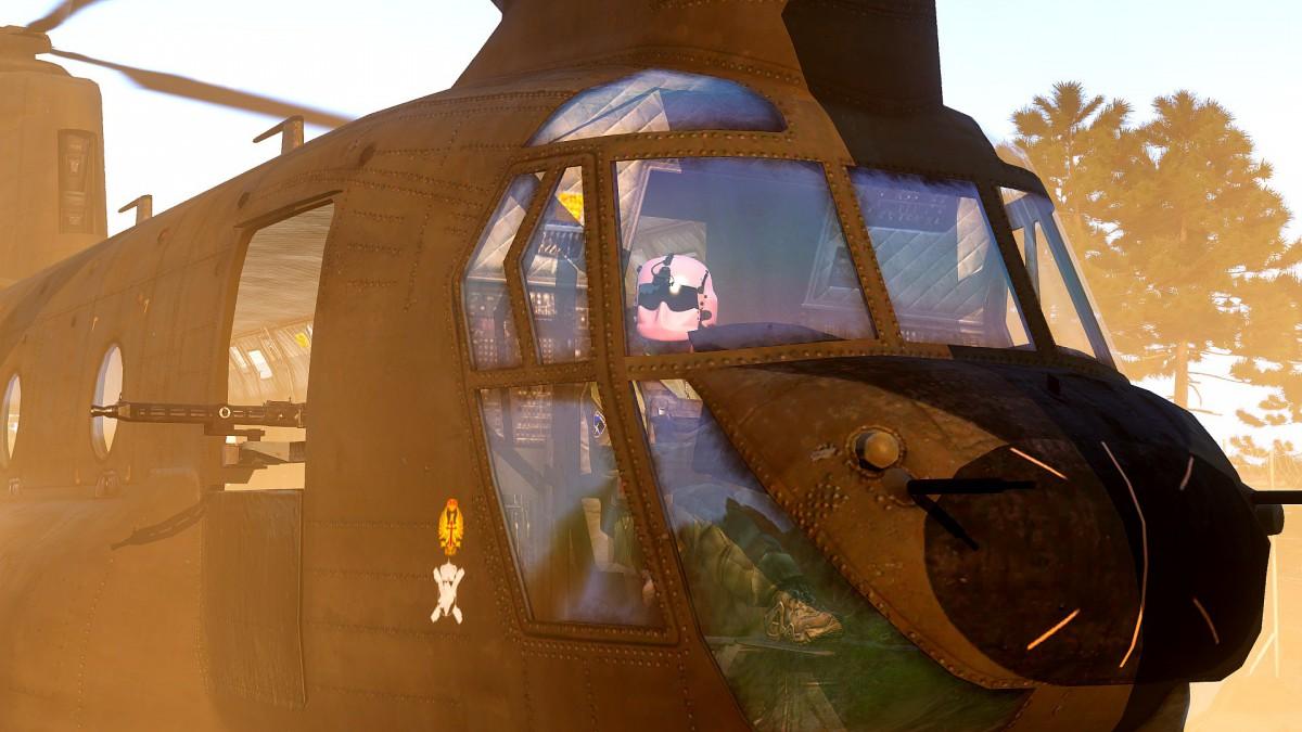 Pinker Pilot